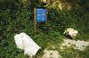 Informationen auf Hinweistafeln am Natur- und Erlebnispfad Perlbachtal
