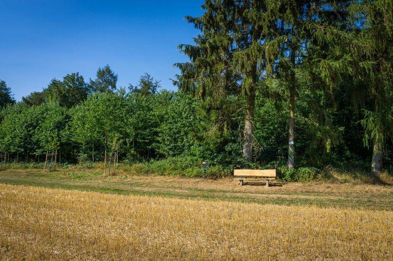 Qualitätsweg Nuff und Nopp Neukirchen