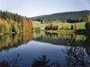 Angeln am Stausee Riedelsbach bei Neureichenau im Dreiländereck Bayerischer Wald