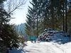 Winterwandern im Dreiländereck