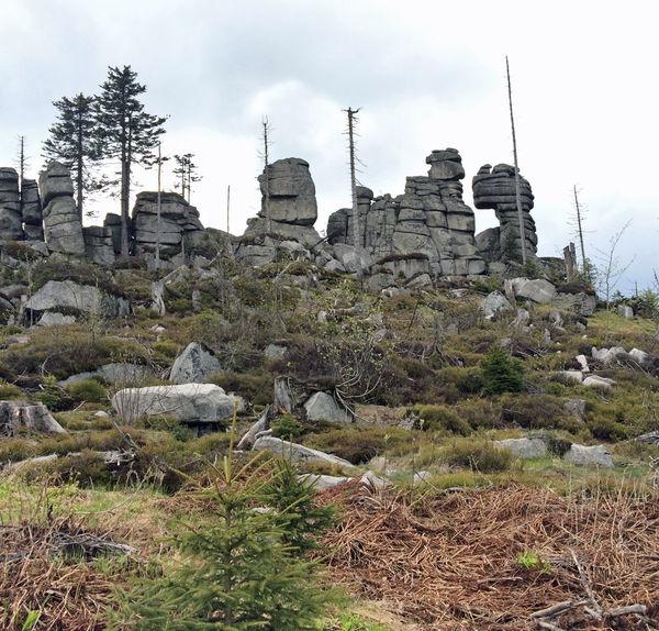 Wandern zum Dreisessel im Bayerischen Wald