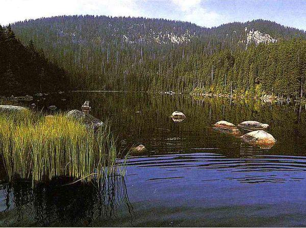 Blick auf den Plešné jezero (deutsch: Plöckensteinsee) im Böhmerwald