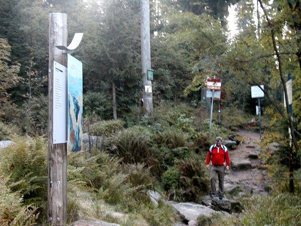 Wandererlebnis auf dem Adalbert-Stifter-Literatur-Wanderweg bei Neureichenau