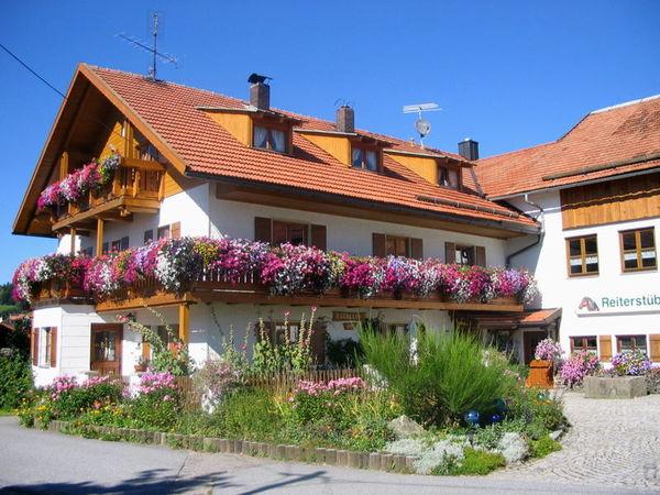 Blick auf den Traumhof Forellen-Reiterhof im Sommer