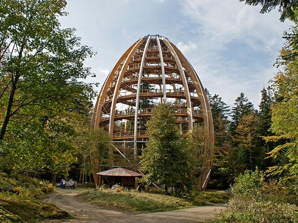 Blick auf den Baumwipfelpfad bei Neuschönau im Nationalpark Bayerischer Wald