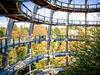 Blick ins Innere des Baumturms am Baumwipfelpfad Bayerischer Wald