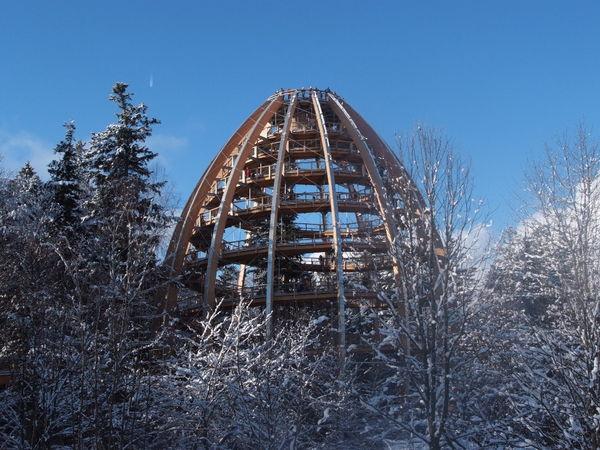 Blick im Winter auf den Baumwipfelpfad bei Neuschönau im Nationalpark Bayerischer Wald