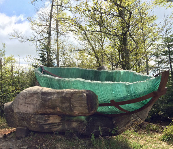 Die Glasarche getragen von einer starken Holzhand inmitten des Bayerischen Waldes am Lusen.