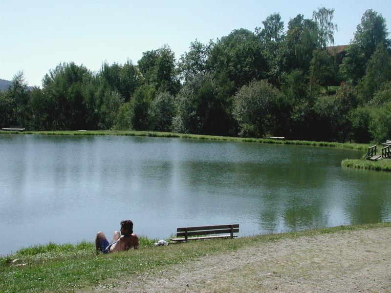 Entspannung am Naturbadeweiher in Neuschönau