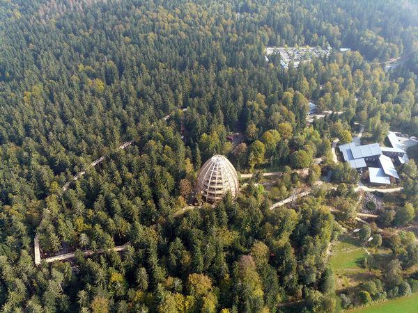Der Baumwipfelpfad im Nationalparkzentrum Lusen aus der Vogelperspektive
