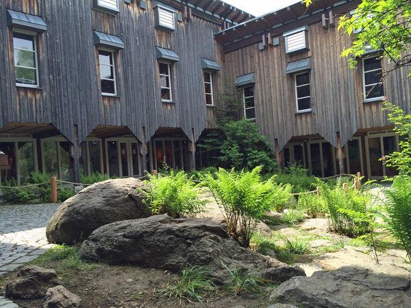 Blick auf das Hans-Eisenmann-Haus im Nationalparkzentrum Lusen bei Neuschönau