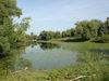 Naturschutzgebiet Donaualtwasser Staatshaufen im Gebiet der Gemeinde Niederalteich