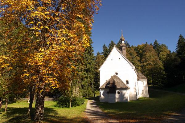 Herbstliches Kirchwald
