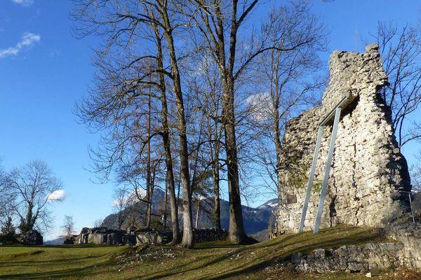 Die Ruine der Auerburg