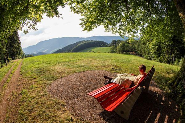 Aussichtsreiches Oberharmersbach - Himmlische Höhe