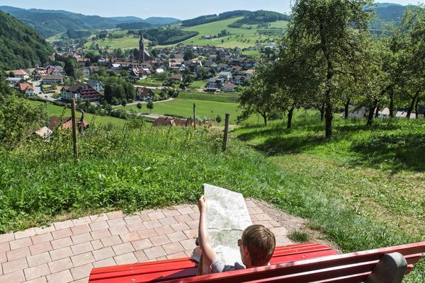 Aussichtsreiches Oberharmersbach - Bei den Fichten