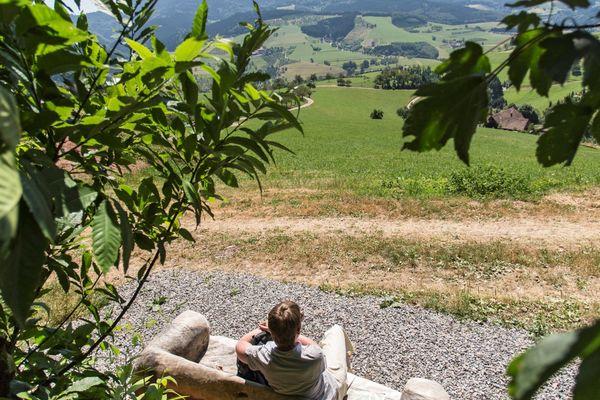 Aussichtsreiches Oberharmersbach - Waldcanapé