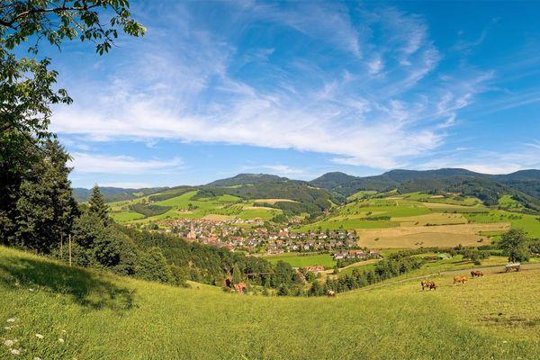 Blick auf Oberharmersbach im Sommer