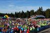 Thüringer Wald Firmenlauf 2015 in der DKB-Ski-ARENA Oberhof