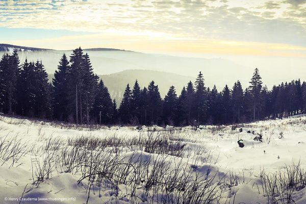Blick auf den verschneiten Thüringer Wald