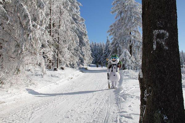Schneemann Flocke am Grenzadler Oberhof