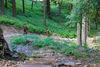 Ausblick auf den Naturerlebnispfad Oberhof im Thüringer Wald