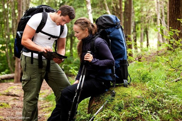 Nordic Walker im Wald