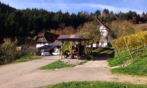 Fießhof
