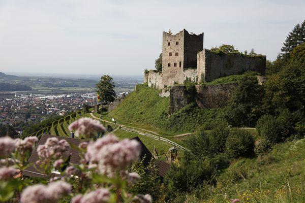 Ruine Schauenburg in Oberkirch