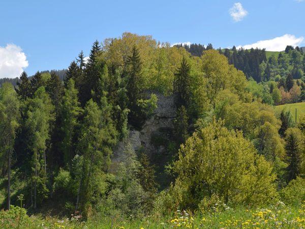 Burgruine Moregg, Obersaxen
