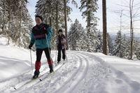 Langlauf auf dem Schwarzenbruch in Oberwolfach