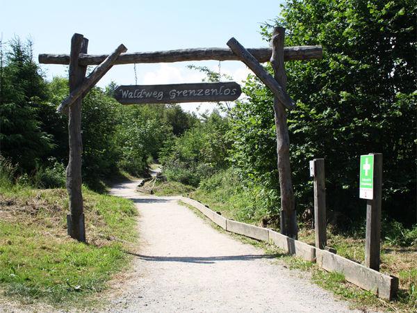 Waldweg Grenzenlos