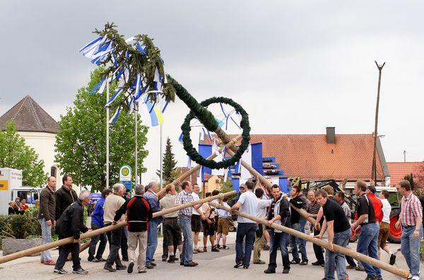 Maibaumaufstellen in Paunzhausen