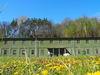 Bunkeranlage Fuchsbau in Petersdorf, Foto: Matthias Beyer