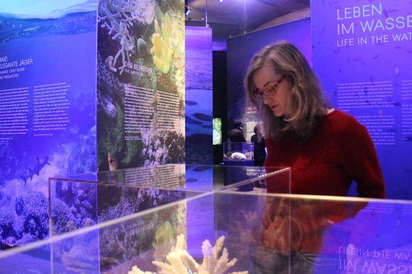 Ausstellung Great Barrier Reef im Gasometer Pforzheim