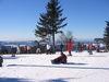 Wintersportler auf dem Almberg bei Mitterfirmiansreut in der Gemeinde Philippsreut