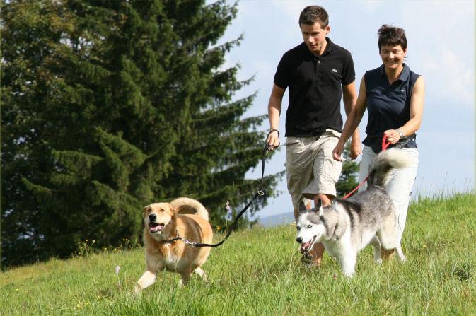 Urlaub mit Ihren Hunden im Landhotel Haus Waldeck in Mitterfirmiansreut