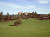 Blick über eine Rotwildherde zur Filialkirche in Krailing (Gemeinde Prackenbach)