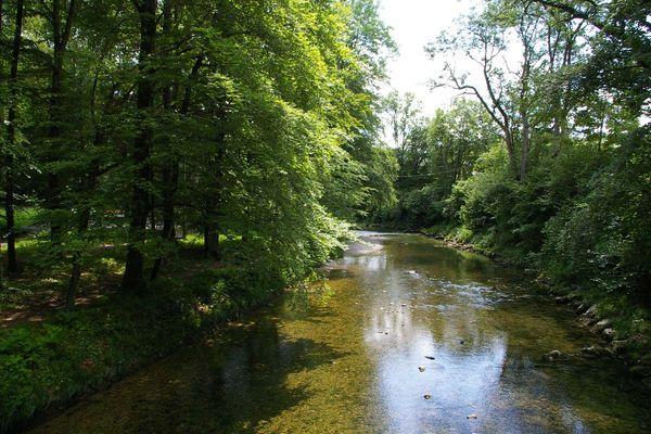 Der klare Mühlbach windet sich zwischen hohen, grünen Bäumen des Eichentals in Prien am Chiemsee.