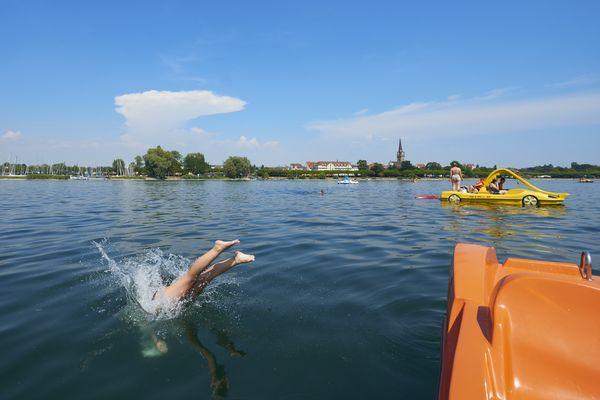 Tretboote im Bodensee vor Radolfzell