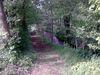 Bachlandschaft am Naturcampingplatz Perlbach bei Rattenberg