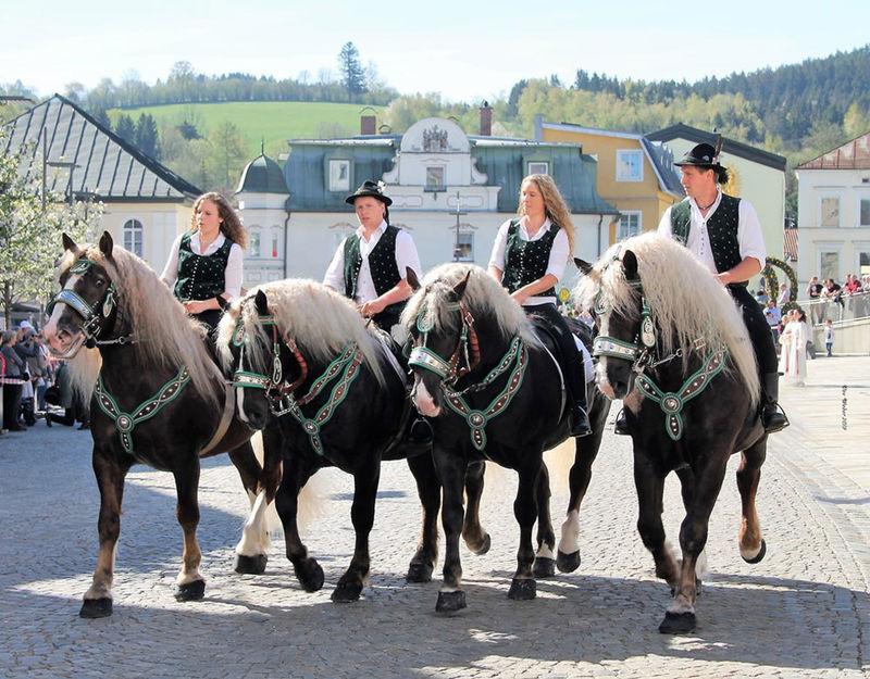 Festlich geschmückte Rösser und Reiter aus dem gesamten Bayerischen Wald nehmen an dem Regener Osterritt teil