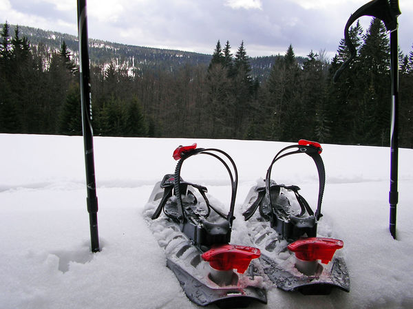 Schneeschuhtouren durch den Bayerischen Wald