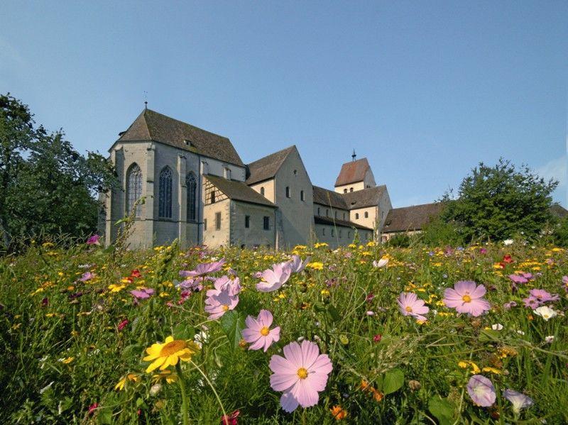 Münster St. Maria und Markus mit Blumenwiese