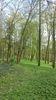 Park Reichenow, Foto: MöHRe e.V.