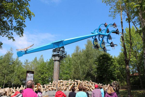 Duell der Adler im Bayernpark Reisbach