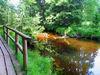 Bohlensteig am Fluss entlang im Naturschutzgebiet Großer Filz und Klosterfilz bei Riedlhütte