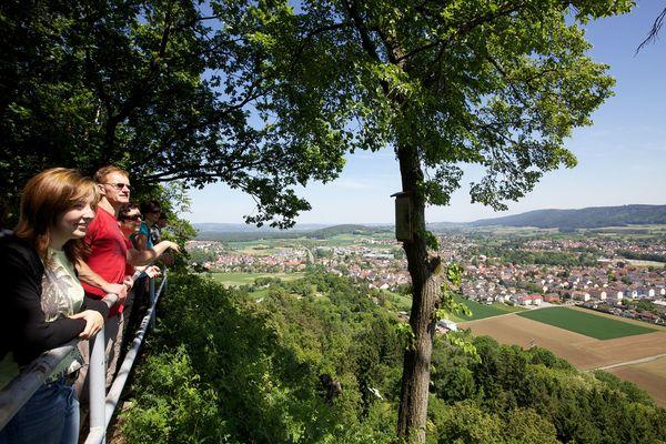 Aussichtspunkt Rosenegg