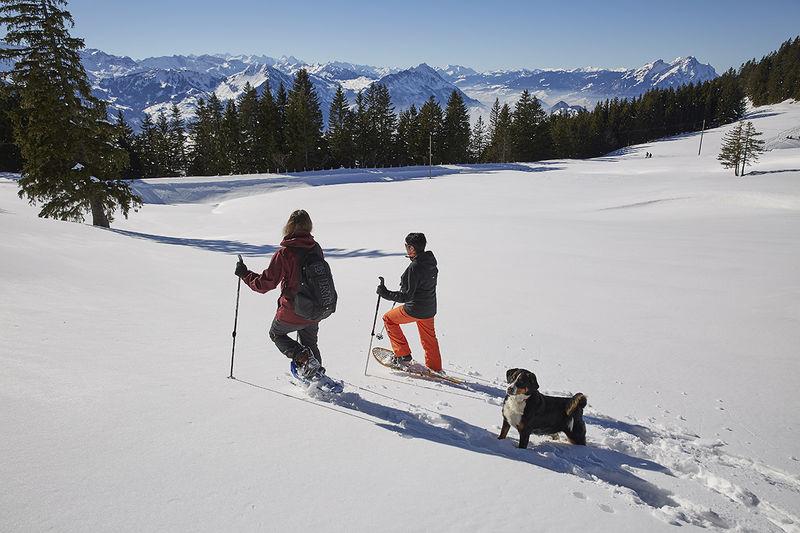 Schneeschuhtrail 4.0 km