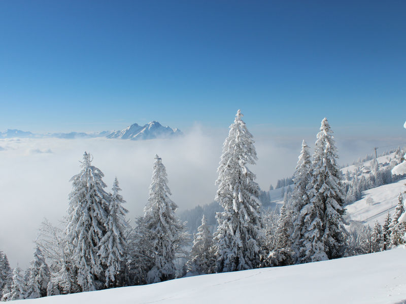 Winter hiking Rigi Firstweg